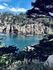 Point Lobos State Natural Reserve Monterrey County CA