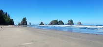 Point of Arches at Shi Shi Beach in Olympic National Park Washington State