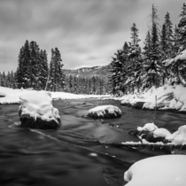 Polecat Creek in the heart of Grand Teton National Park  IG montairephotography