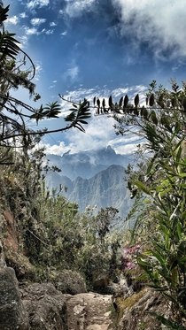 Postcard Moment in Machu Picchu