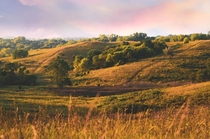 Prairie preserve in my hometown Untouched gem of the loess hills in the middle of my city of western Iowa Our state doesnt get enough recognition on here