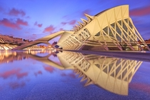 Prince Philip Science Museum Valencia Spain  by Sven Broeckx