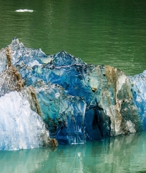 Pure Blue Glacier Ice Floating by our boat above Ketchikan
