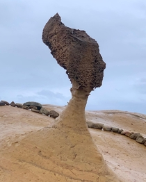 Queens Head a -year-old rock formation in Yehliu Geopark Taiwan