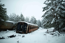 Radioactive train carriages dumped in the woods near Yanov railway station in the Chernobyl Exclusion Zone Photo taken Jan