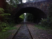 Railroad track in Paris France abandoned since