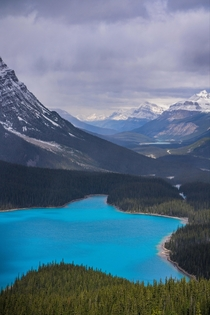 Rain clouds over Peyto Lake