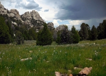 Rainstorm moving in on high mountain meadow in Castle Rocks State Park Idaho
