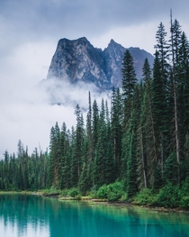 Rainy morning at Emerald Lake Yoho National Park AB  IG kylefredrickson