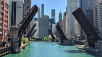 Raised Bridges in Chicago
