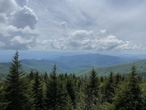 Random view from Clingmans Dome x
