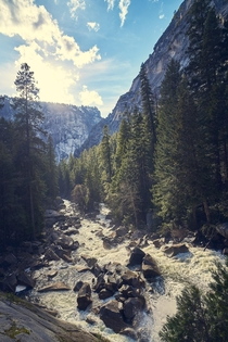 Rapids of Yosemite National Park