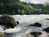 Rapids separating the US and Canada below Niagara Falls Whirlpool National Park NY  Insta GangstAdventures