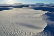 Recent shot while hiking at White Sands Natl Monument NM