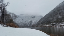 Recent snowfall in the water gap at the Delaware National Recreation area with mature bald eagle flying over Taken with my phone from the New Jersey side OC