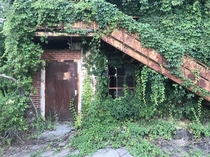 Reclaimed by poison in South Carolina