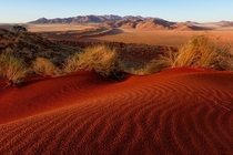 Red Dunes of Namibia  Photo by Justin Reznick