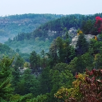 Red River Gorge KY on a fall morning