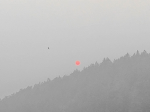 Red Sun at Morning smoked out during the West Coast summer wildfires