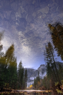 Reflecting in Yosemite II OC