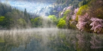 Reflection and mist - near Gwangju South Korea  photo by Alex Lee