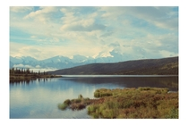 Reflection Pond in Denali National Park during my trip to Alaska last Summer OC x