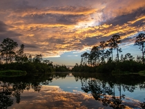 Reflections in Okefenokee National Wildlife Refuge