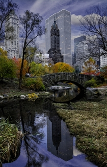 Reflections of the cityscape in Central Park NYC Photo by Ron Diel