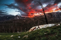 Remnants of the  Tripod fire ft Windy Peak to the left Pasayten Wilderness WA