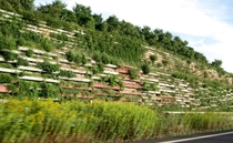 Retaining wall planters along the German Autobahn