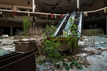 Return to the abandoned Rolling Acres Mall Photo by Johnny Joo  more in comments