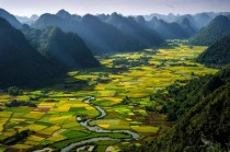 Rice Paddies Ha Giang Vietnam