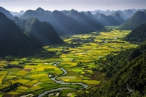 Rice plots in the Bacson Valley by HaiThinh Hoang