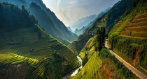 Rice terraces M Cang Chi District Vietnam by Sarawut Intarob
