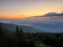 Rising sun on Mount Mitchell NC