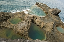 Rockpools on the coast of El Charco in the Canary Islands  Photographed by Alexis Martn