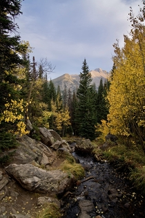 Rocky Mountain National Park aspen colors days before the fires closed the park OC