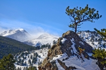 Rocky Mountain National Park CO  by Jack Sasson