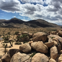 Rolling clouds over the expanse of Joshua Tree National Park x