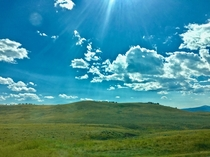 Rolling hills of central Montana