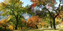 Royal Garden of Hunza With The Glimpse of Autumn