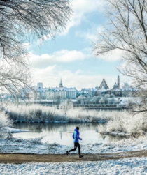Running in perfect winter scenery