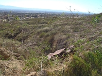 Rusted s car in gully foothills of Rancho Cucamonga California