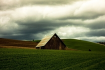 Rusted Shed in Walla Walla WA  OC