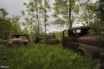Rusty Abandoned Vehicles Found Hidden Away Out Behind an Abandoned House in Rural Ontario Canada