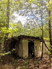s Drive-In Movie Theater Concession Stand Decaying In The Middle Of The Forest In Canton GA