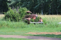 s Studebaker rusting away in a Minnesota farm field