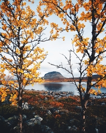 Saana fell framed with autumn colors in northern Finland
