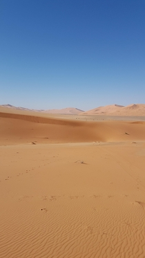 Sahara_desert in the heart of the great desert and the dunes x oc
