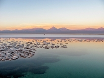 Salar de Attacama at Sunset Chile